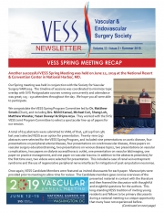 Vess-Final-Summer-issue-2019-v2_Page_1